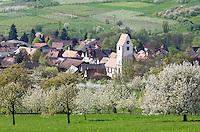 Germany, Baden-Wuerttemberg, Markgraefler Land, landscape and village Obereggenen | Deutschland, Baden-Wuerttemberg, Markgraeflerland, Landschaft und Ort Obereggenen