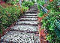 Ninety-nine steps to Blackbeards Castle. Charlotte Amalle, St. Thomas. US Virgin Islands