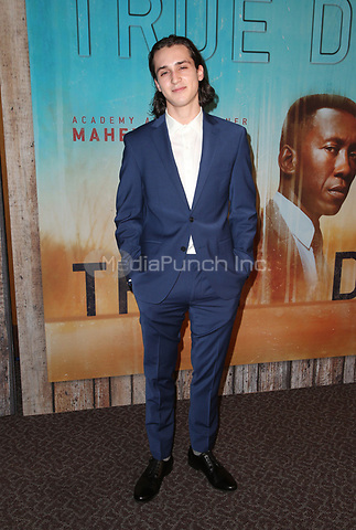 LOS ANGELES, CA - JANUARY 10: Richard Meehan, at the Los Angeles Premiere of HBO's True Detective Season 3 at the Directors Guild Of America in Los Angeles, California on January 10, 2019. Credit: Faye Sadou/MediaPunch
