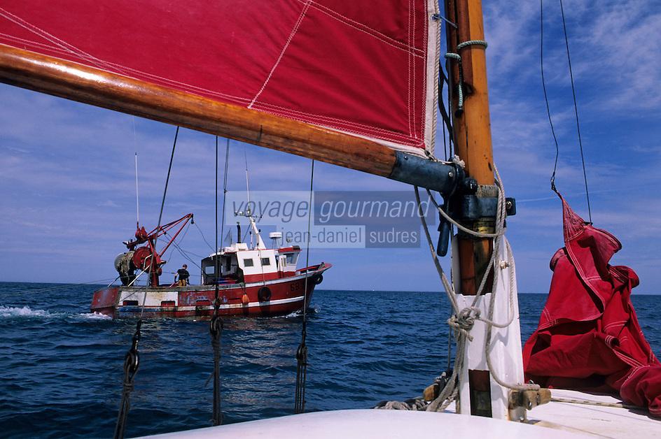 """Europe/France/Bretagne/22/Côtes d'Armor/Plérin-Sous-La-Tour/Baie de Saint-Brieuc: Sur le voilier """"Fly"""" plan cornu de Yannick Provost et chalutier"""