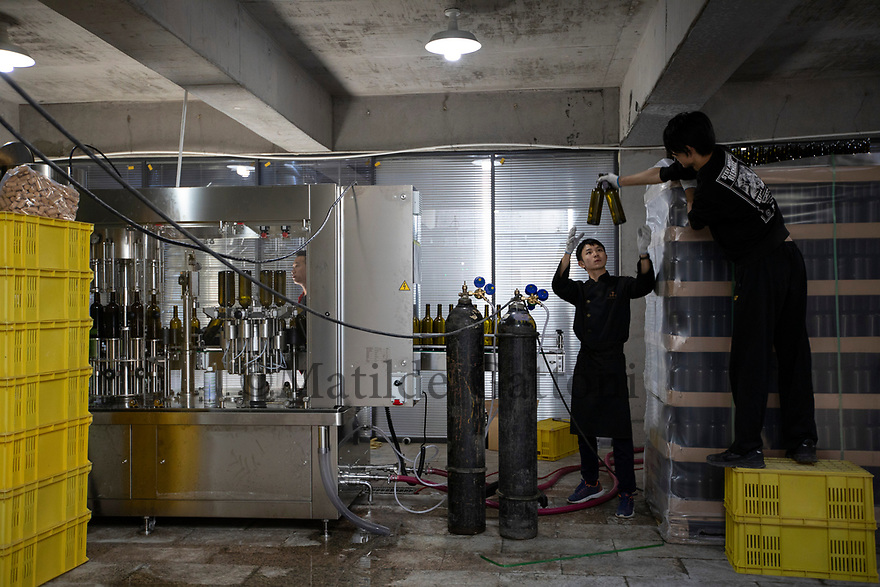 China - Ningxia - A bottling line at Xia Mu Winery. The Ningxia wine industry relies almost completely on equipment imported from Europe. Apart from bottles and steel tanks, everything else comes from abroad, from machinery to corks and casks, making Ningxia wine extremely expensive to produce.
