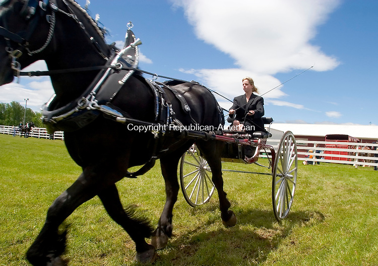 GOSHEN, CT -11 JUNE 06- 061106JT01-<br /> Sarah LaPlante, of Oxford, rides a Percheron horse owned by Chuck Melius during the Lady's Cart and Wagon Show for the fifth annual &quot;Dust Off&quot; draft horse show and antique tractor pull at Goshen Fairgrounds on Sunday. LaPlante placed fourth in the show class.<br /> Josalee Thrift Republican-American