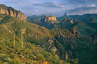 Weavers Needle<br />