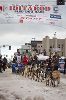 Jason Campeau and team leave the ceremonial start line with an Iditarider at 4th Avenue and D street in downtown Anchorage, Alaska during the 2015 Iditarod race. Photo by Jim Kohl/IditarodPhotos.com