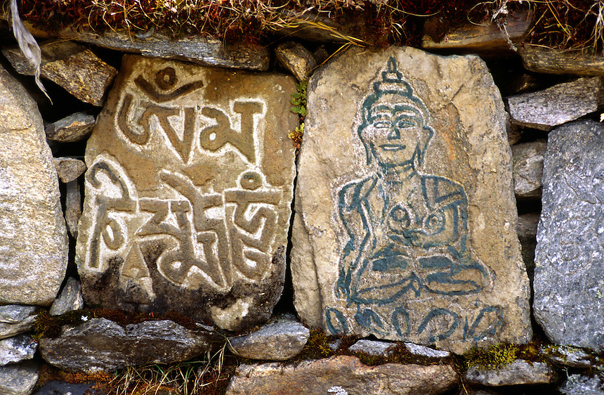 Carved MANI STONES & BUDDHA at YANGLE KHARKA in the MAKALU BARUN NATIONAL PARK,  NEPAL