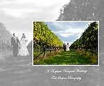 Raphael Vineyard album