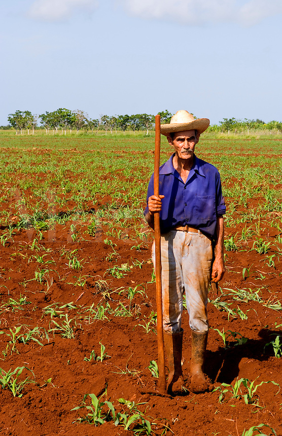 Simple farmer portait working fields in Havana Provence outdoors near Havana Cuba Habana