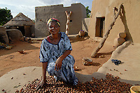 BURKINA FASO Dorf Sesuala bei Pó , Ethnie Kassena ,Frauen Kooperative verarbeiten Karite bzw Shea Nuesse zu Shea Butter, Frau Avi Nabila , Leiterin der Kooperative - BURKINA FASO , village Sesuala near Pó , ethnic Kassena , women cooperative produce shea butter from shea nuts of Karite tree, Mrs. Avi Nabila , leader of cooperative