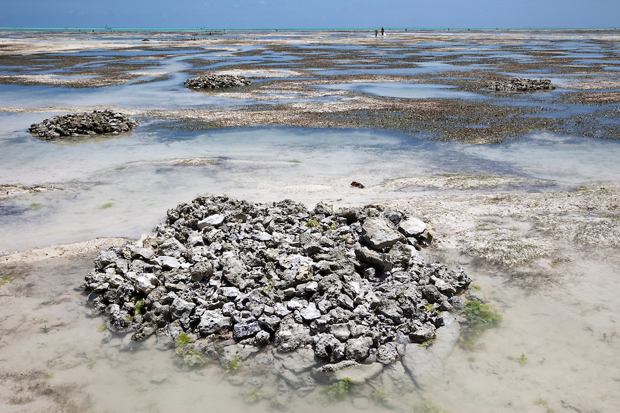 Jambiani, Zanzibar, Tanzania.  Piles of Stones Mark Buried Coconut Husks.  After a few weeks under the sea these husks will be dug up and the water-resistant coir will be turned into rope.  These piles are completely covered at high tide.