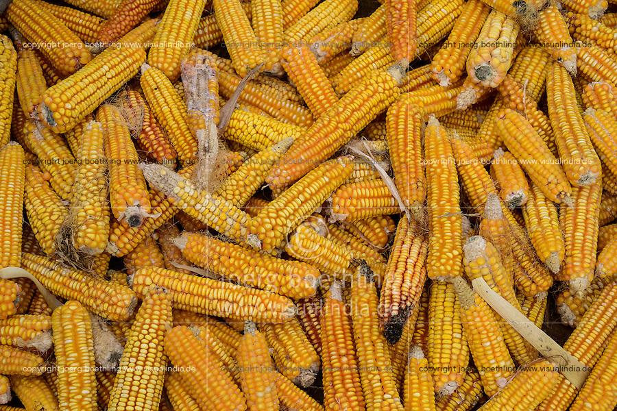 TURKEY Manisa, village Hacihaliller, corn storage / TUERKEI, Dorf Hacihaliller, Mais Speicher