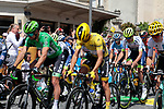 Green Jersey Peter Sagan (SVK) Bora-Hansgrohe and new race leader Yellow Jersey Julian Alaphilippe (FRA) Deceuninck-Quick Step line up for Stage 4 of the 2019 Tour de France running 213.5km from Reims to Nancy, France. 9th July 2019.<br /> Picture: Colin Flockton | Cyclefile<br /> All photos usage must carry mandatory copyright credit (© Cyclefile | Colin Flockton)