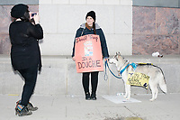"A woman poses for a picture wearing a sign reading ""Donald Trump is a douche"" while leading a dog with a sign reading, ""Hey Trump, I'll give you a Golden Shower,"" as people gather in the National Mall area of Washington, DC, for the Women's March on Washington protest and demonstration in opposition to newly inaugurated President Donald Trump on Jan. 21, 2017. The ""golden shower"" sign is a reference to the rumored ""pee tape"" from the Steele Dossier, which states that Trump paid prostitutes to pee on a bed used by former president Obama in a Moscow hotel room."