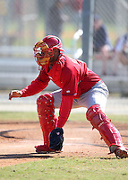 March 19, 2010:  Catcher Ivan Castro of the St. Louis Cardinals organization during Spring Training at the Roger Dean Stadium Complex in Jupiter, FL.  Photo By Mike Janes/Four Seam Images