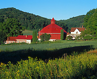 Pepin County, WI<br /> Farm with octagonal red barn under a forested hillside