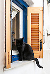 Black cat on a window sill in Plaka, Athens, Greece