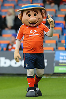 The Luton Town mascot ahead of the Sky Bet League 2 Play Off Semi Final 2 leg match between Luton Town and Blackpool at Kenilworth Road, Luton, England on 18 May 2017. Photo by David Horn.