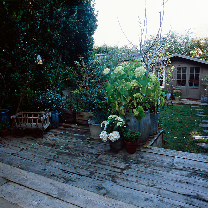 A garden seen from a decked terrace towards a building at the end of the garden, which doubles as a potting shed and a studio.