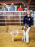 Winning goat for sale, 54th annual Junior Livestock Auction during Sunday at the 80th Amador County Fair, Plymouth, Calif.<br /> .<br /> .<br /> .<br /> .<br /> #AmadorCountyFair, #1SmallCountyFair, #PlymouthCalifornia, #TourAmador, #VisitAmador