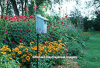 Bird House, Gloriosa Daisy, Red Bee Balm, Hollyhocks, Butterfly Bush & Butterfly Weed  Marion Co. IL