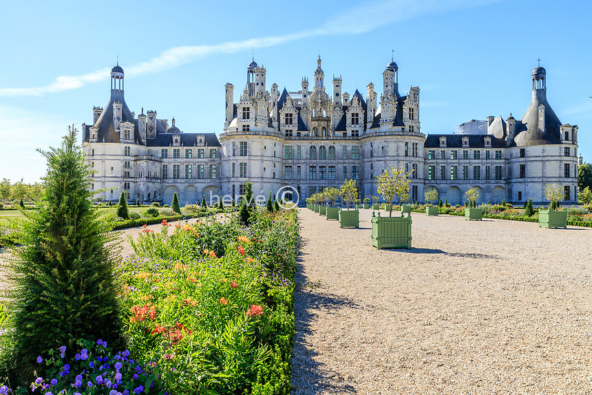 France, Loire-et-Cher (41), Chambord, château de Chambord, les jardins à la française, parterre de plantes vivaces bordé de fusains et topiaires d'if
