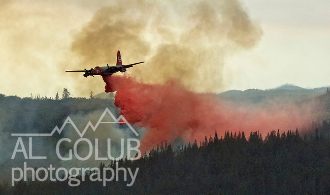 Greeley Hill, California-- July 30, 2008-Telegraph Fire-Wildfires Threaten Yosemite National Park. Cal Fire bomber drops retardant on the leading edge of Telegraph fire, Wednesday.  Division L is on the leading edge of the fire and is threatening Greeley Hill..Photo by Al GOLUB/Golub Photography
