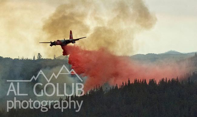 Greeley Hill, California-- July 30, 2008-Telegraph Fire-Wildfires Threaten Yosemite National Park. Cal Fire bomber drops retardant on the leading edge of Telegraph fire, Wednesday.  Division L is on the leading edge of the fire and is threatening Greeley Hill..Photo by Al GOLUB/Golub Photography