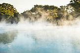 NEW ZEALAND, Rotorua, Woman Overlooking Rotorua Hot Springs, Ben M Thomas