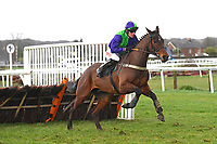 Listronagh Stone ridden by Nick Scholfield clears the last and heads for the finish in The That Friday-Ad Feeling Novices' Hurdle during Horse Racing at Plumpton Racecourse on 10th February 2020