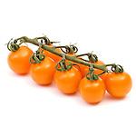 Sakata Orange Rapture Tomato