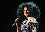Diana Ross - 2008 Candlelight Dinner