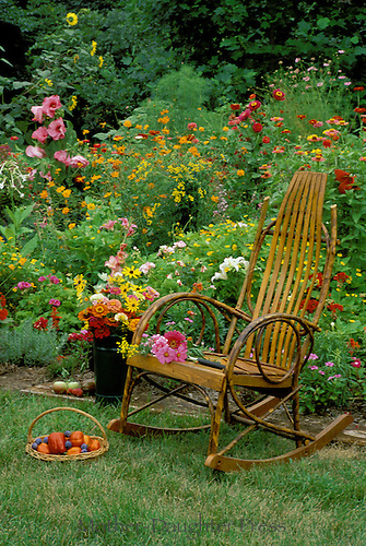 Bentwood Victorian rocking chair beside colorful annual flower garden USA