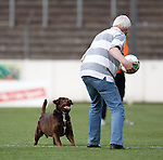 The german groundsman lets his dog chase the matchball at the end of the match