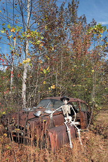Ever the epitome of a super cool spirit with his hat, cigar, and shades, Jake rests his bones on a sunny fall day in the afterlife by sitting on the lopped-off door of a junkyard car. It&rsquo;s a rare rusting &ldquo;Henry J&rdquo; from the fifties he&rsquo;s using as a lazy man&rsquo;s throne, and what-the-hey, a junkyard is better than a graveyard any day for a haunting specter! And what better car to drive around in to make Halloween visits than this spook-mobile?<br /> <br /> Monthly Newsletter sign up at Dierks Photo on Facebook...