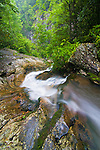 Looking down the chute of Red Fork Falls in summer, Unaka Mountain Wilderness, TN