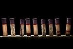 Santa Catalina Island Fox (Urocyon littoralis catalinae) blood samples, Santa Catalina Island, Channel Islands, California