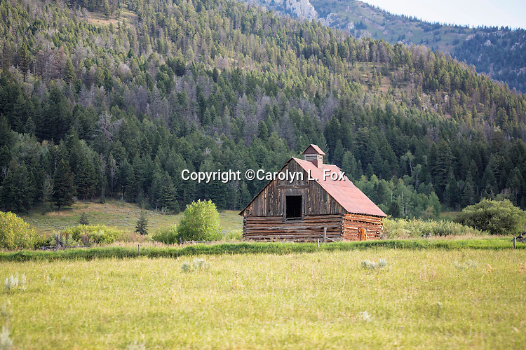 A old barn sits in a meadow.