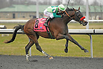 FLORENCE, KY - MARCH 17: #8 Blended Citizen, ridden by Kyle Frey wins the G3 Jeff Ruby Steaks Stakes at Turfway Park on March 17, 2018 in Florence, KY. (Photo by Jessica Morgan/Eclipse Sportswire/Getty Images)