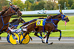 OCTOBER 12, 2019 : McWicked driven by Brian Seaars, wins the $250,000 Dan Rooney Invitational Pace at 1 mile, at Yonkers Raceway, on October 12, 2019 in Yonkers, NY.  Sue Kawczynski _ESW_CSM
