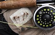 Roaring River Fly Fishing