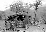 Samburu women building a traditional  hut.  <br /> Maralal, Samburu District.  <br /> Northern Kenya.