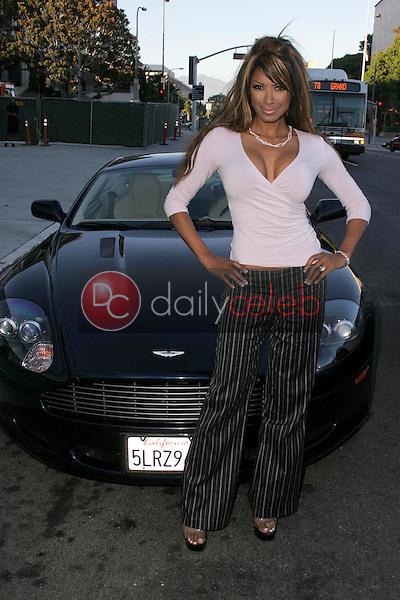 Traci Bingham<br />at the Aston Martin Advantage Tour. Walt Disney Concert Hall, Los Angles, CA. 09-08-05<br />Dave Edwards/DailyCeleb.Com 818-249-4998