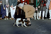 First lady Barbara Bush reaches down to pet her dog, Millie as she and United States President George H.W. Bush depart the South Lawn of the White House in Washington, DC to spend the weekend at Camp David, the presidential retreat near Thurmont, Maryland on March 10, 1989. <br /> Credit: Ron Sachs / CNP