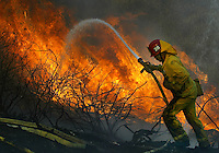 Ventura County firefighter Ray Lambert, works to controll fire near Lake Piru, Thursday Oct. 23 2003. Several hundred acres of brush had burned by 3pm, with  the fire moving into the Los Padres Forest just as weather service is projecting Santa Ana winds to arrive later this week.