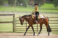Triple C Farm Horse Show August 2013