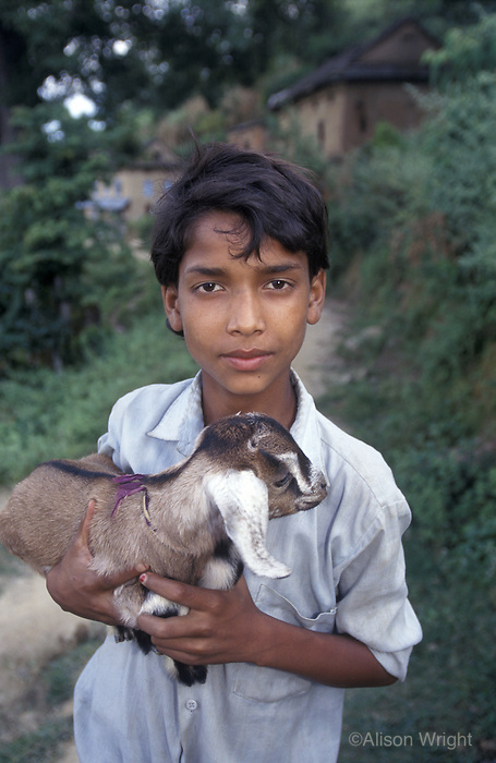 Boy with goat in Dhulikehel, nepal, 1997