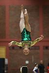 Women's Artistic Gymnastics.