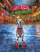 PAUL,REALISTIC ANIMALS, REALISTISCHE TIERE, ANIMALES REALISTICOS, paintings+++++NW_Umbrella-Dog-H,USLGNW20,#a#, EVERYDAY ,funny photos