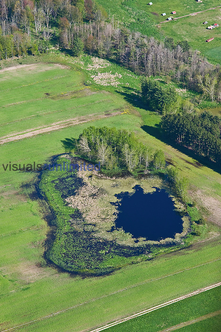 Farm fields and eutrophic farm pond, Michigan, USA