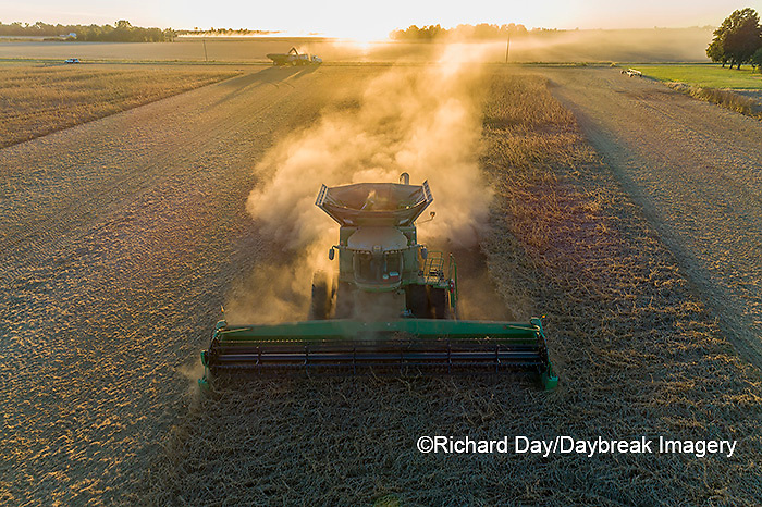 63801-13318 Harvesting soybeans at sunset in fall-aerial  Marion Co. IL