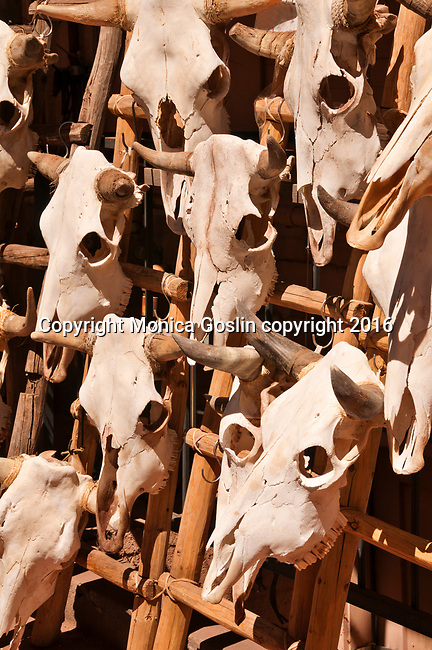 Cow skulls for sale at shops on Old Santa Fe Trail downtown Santa Fe, New Mexico